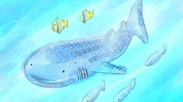 ジンベイザメの海|Procreate