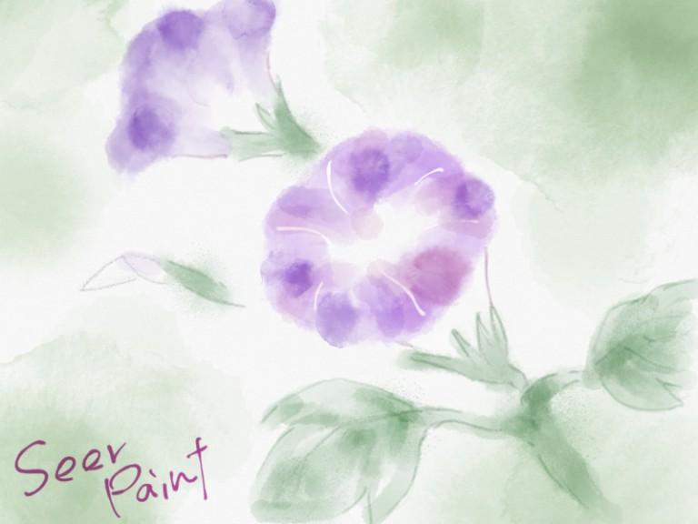 あさがお|水彩|TayasuiSketches